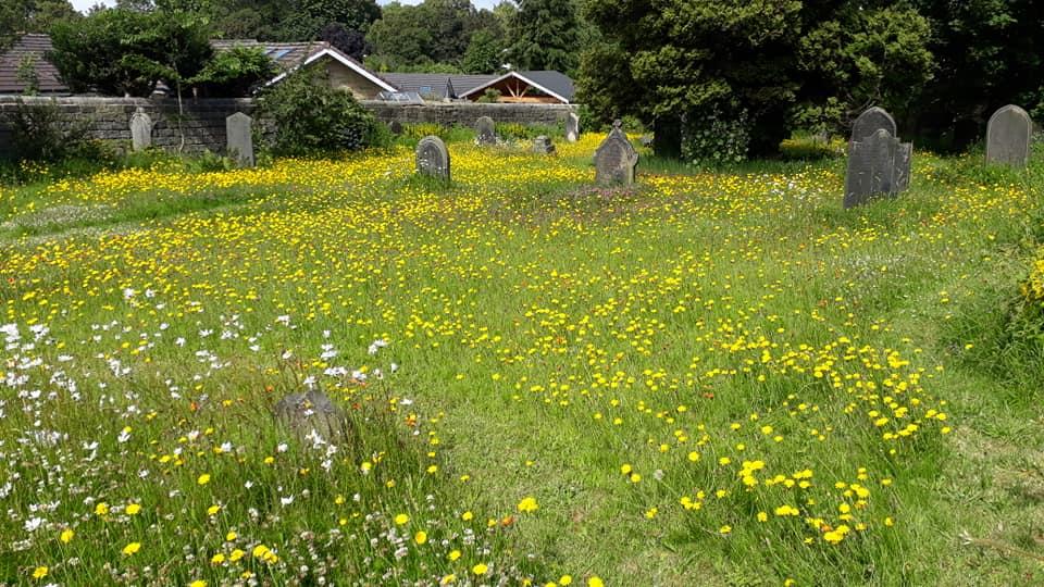 burial-ground19-07